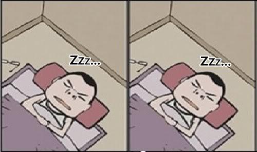 为什麼失眠的时候,大家都说要数羊呢?